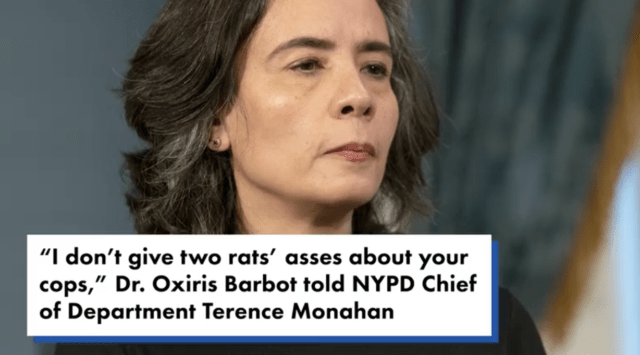 NYC health chief under fire for alleged remark about police
