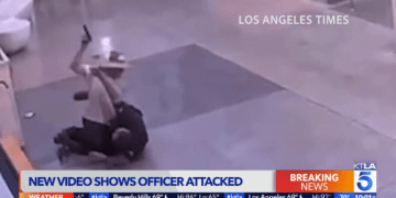 LAPD officer pistol whipped