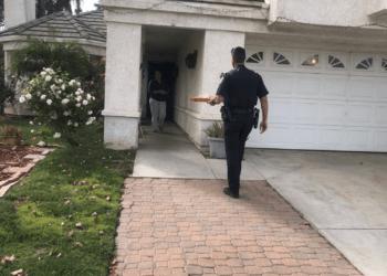 cops bust