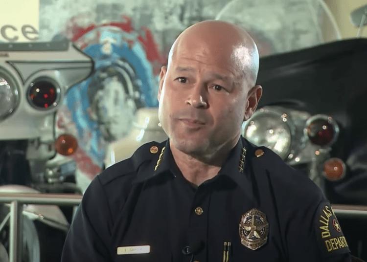 Dallas police chief