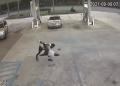 woman mauled